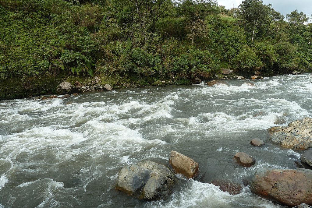 Rio Cosanga in Ecuador - rapids and rocks with forest behind