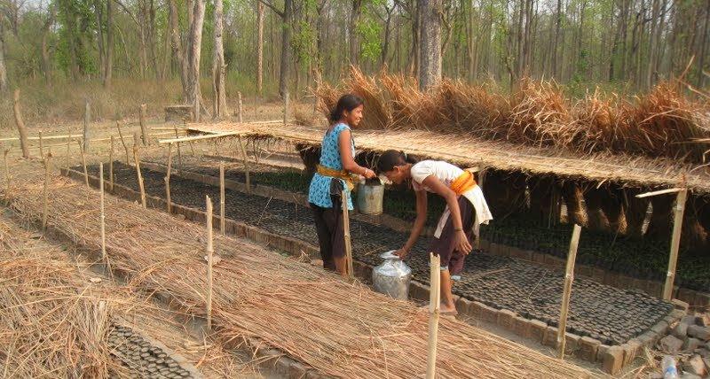 Two women working in a garden