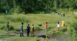 People walking through forest during wildlife monitoring training